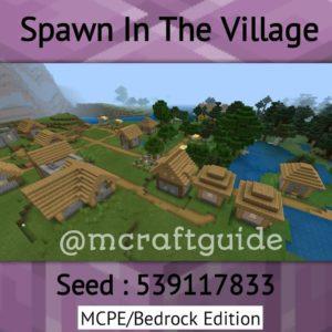 Minecraft village seed #1
