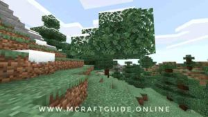 floating tree in Minecraft